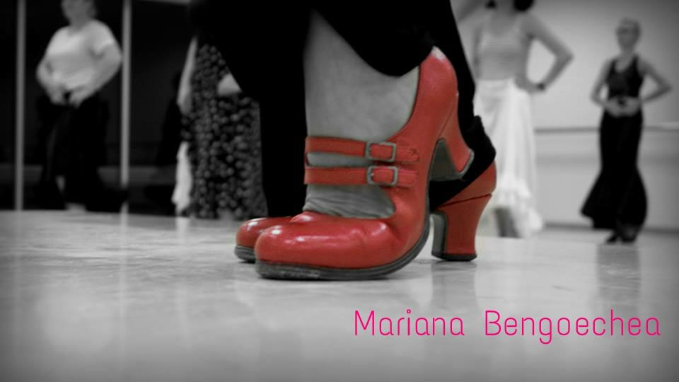 a8dbfd6f BERTIE Buenos Aires Zapatos profesionales para flamenco